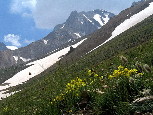 Mount Suleiman in the Alborz Mountains